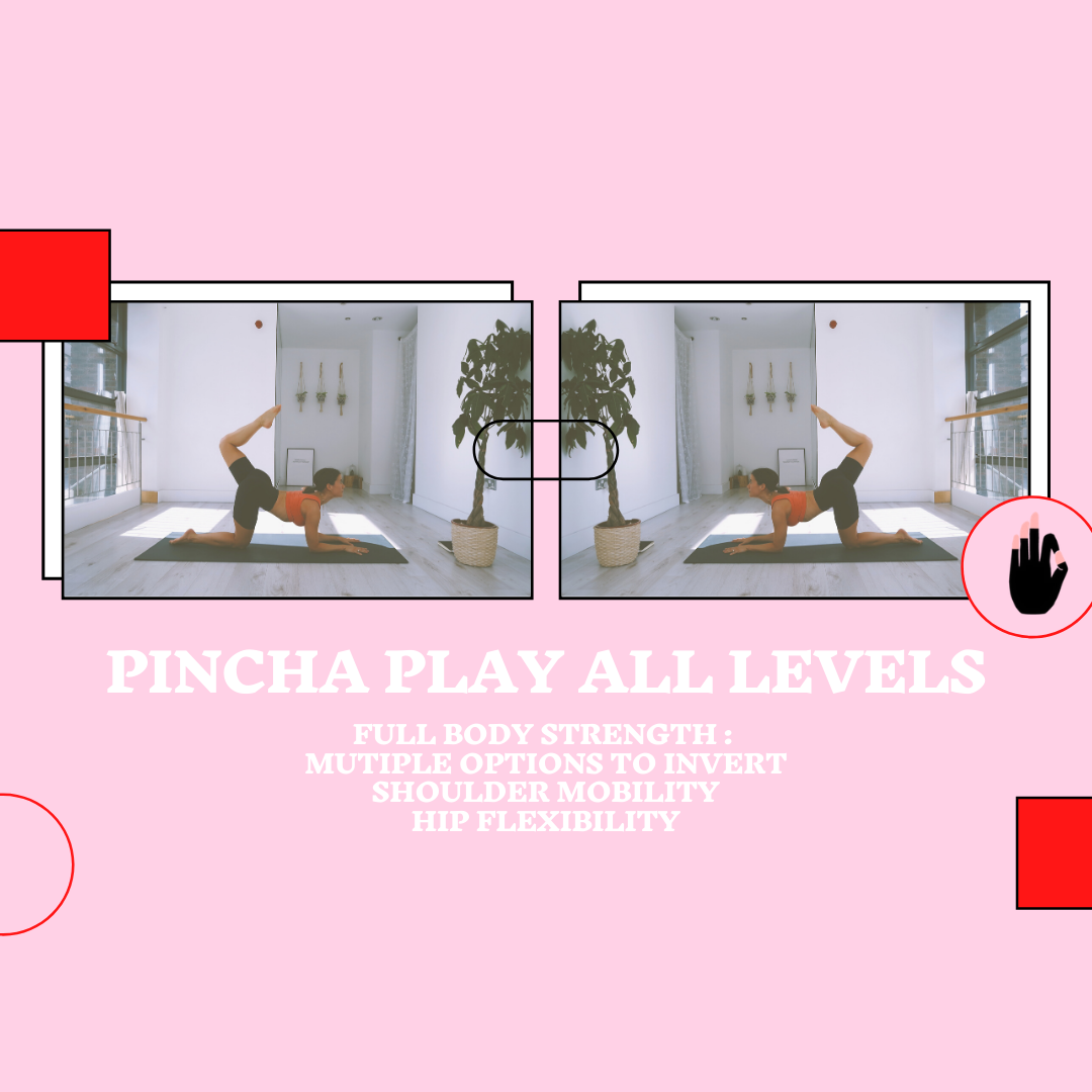 Play with Pincha All Levels