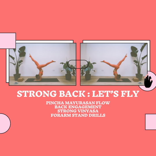 Back Strength : Pincha Flow