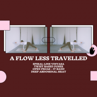 A Flow Less Travelled