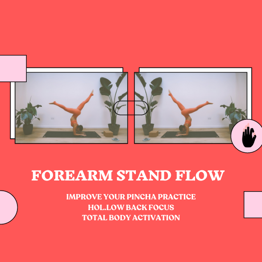 Forearm Stand Flow (Hollow Back)